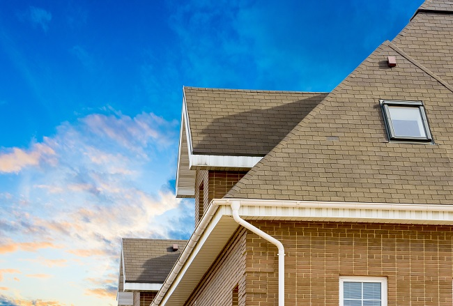 Why You Should Hire a Professional When in Need of a New Roof